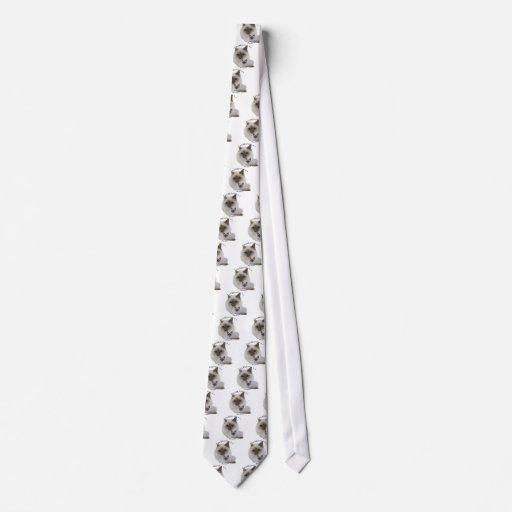 PURRfection Birman Lilac Tie