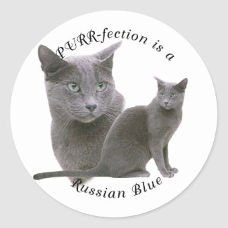 PURRfection Russian Blue Classic Round Sticker