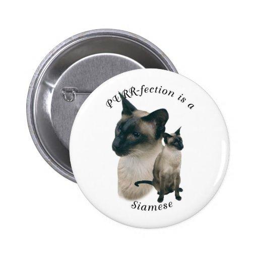 PURRfection Siamese seal point 2 Inch Round Button