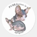 PURRfection Sphynx Classic Round Sticker