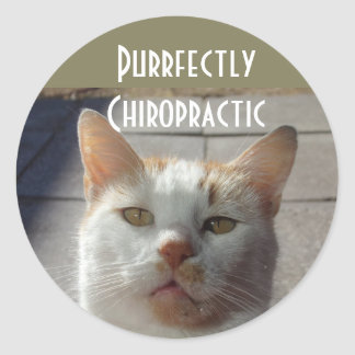 Purrfectly Chiropractic Stickers