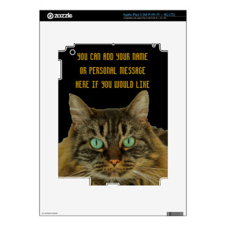 PURRfectly Cute Green Eyed Cat to Personalize iPad 3 Skins