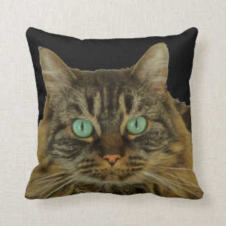 PURRfectly Cute Green Eyed Cat to Pillow