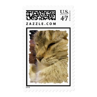 Purring Cat Cards & Postage. Postage