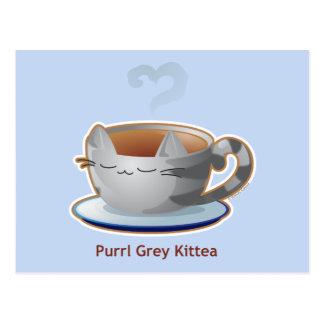 Purrista Pawfee: Taza gris del té del gatito Tarjeta Postal