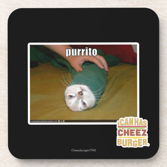 purrito beverage coaster
