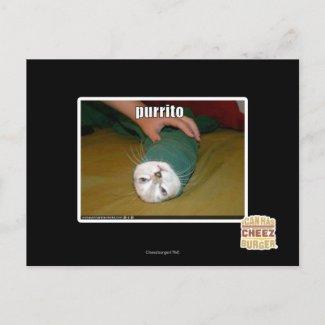 purrito postcard