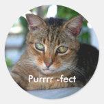 Purrrr - fect pegatinas redondas
