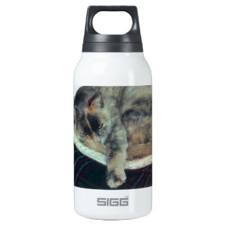 Purrtricia, a Calico Kiitty - photograph Thermos Water Bottle