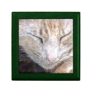Purssia the Cat Keepsake Boxes