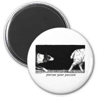 Pursue your passion Border Collie Magnet