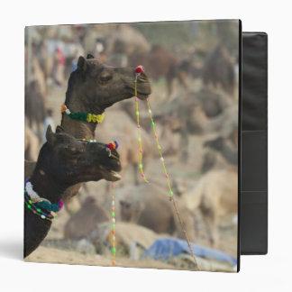 Pushkar Camel Fair, Pushkar, Rajasthan, India Binders