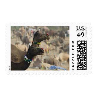 Pushkar Camel Fair, Pushkar, Rajasthan, India Postage