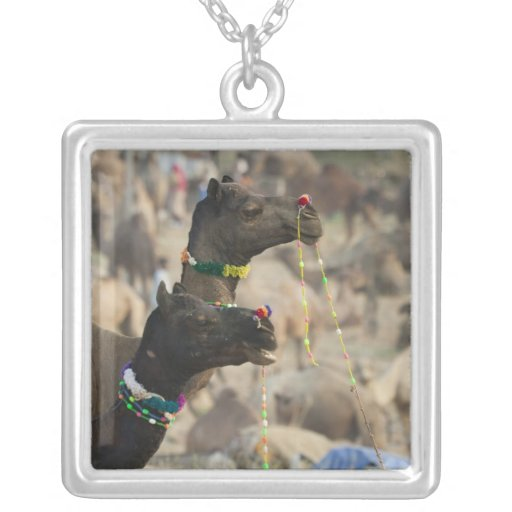 Pushkar Camel Fair, Pushkar, Rajasthan, India Square Pendant Necklace