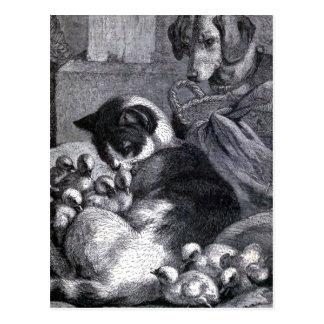 """Puss and the Children"" Vintage Illustration Postcard"