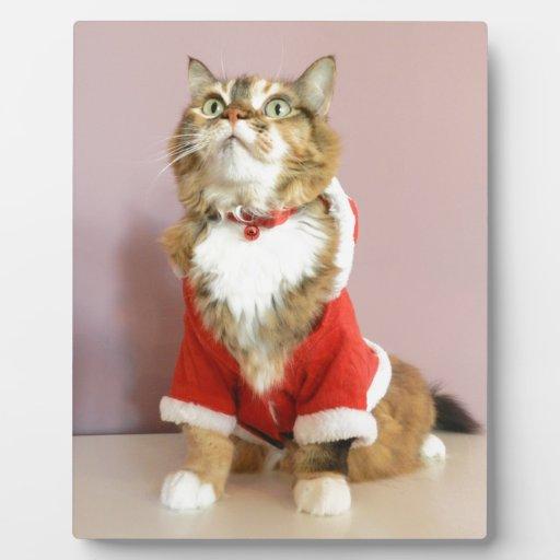 Puss de santa del gato de las Felices Navidad Placas Con Foto