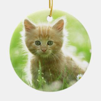 Puss en campos ornamento de navidad