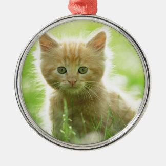 Puss en campos ornamento para arbol de navidad