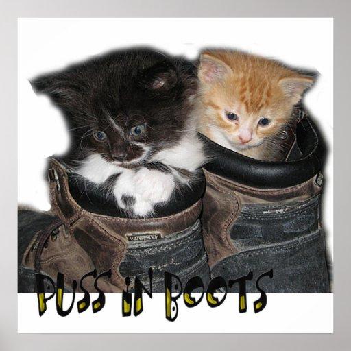 Puss en fotografía de los gatitos de las botas poster