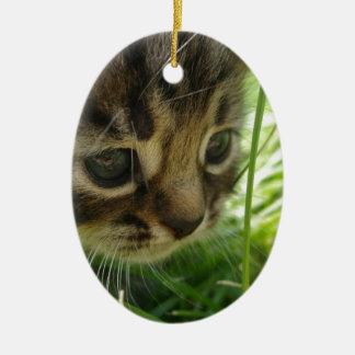 Puss en la hierba ornamentos de reyes magos
