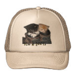 Puss In Boots Kittens Photograph Mesh Hats