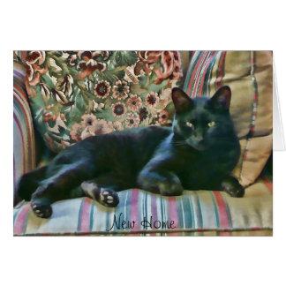 Puss orgulloso, gato negro tarjeta de felicitación