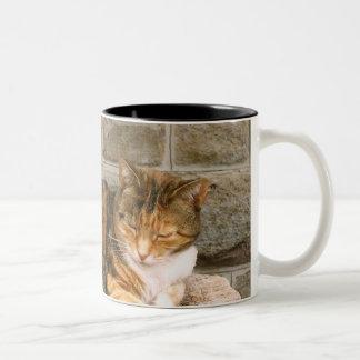 Pussels - Cat on a Stump Coffee Mug