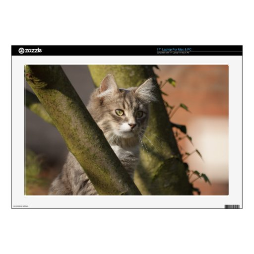 """Pussy Cat 17"""" Laptop Decals"""
