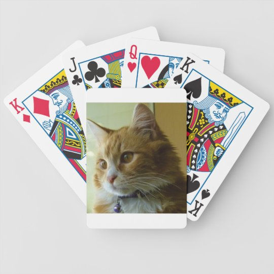 pussy cat bicycle playing cards