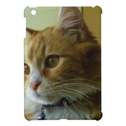 pussy cat iPad mini covers
