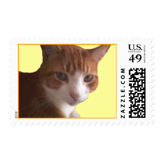 pussy cat postage