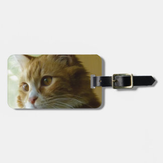 pussy cat tag for luggage