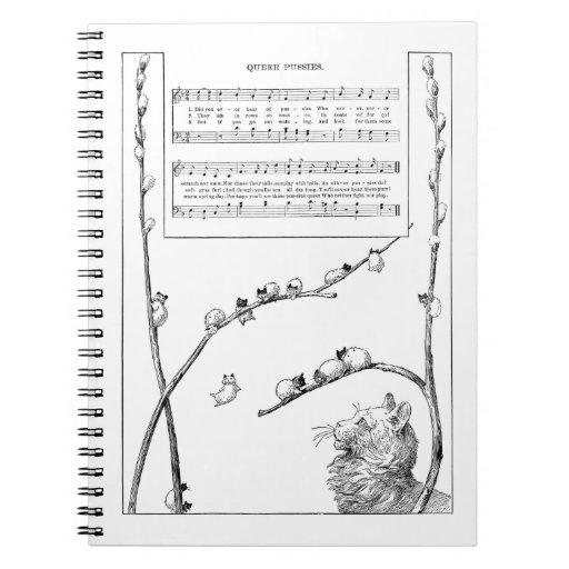 Pussy Willow Kittens Song Notebooks