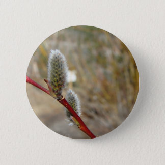Pussy Willow Pinback Button