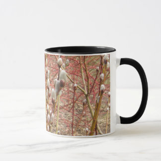 pussy willows in springtime mug