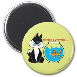 Pussyfoot Grumpy Kitty 2 Inch Round Magnet