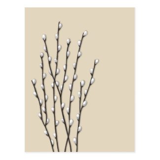 Pussywillows Nature Art Postcard with Custom Color