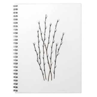 Pussywillows Notebook