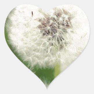 Pusteblume 2013 1 pegatina en forma de corazón