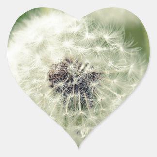 Pusteblume 2013 2 pegatina en forma de corazón