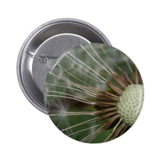 pusteblume pinback button