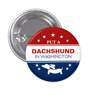 Put Dachshund in Washington Political Button