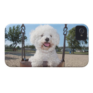Put In Your Own Photo iPhone 4/4S Case