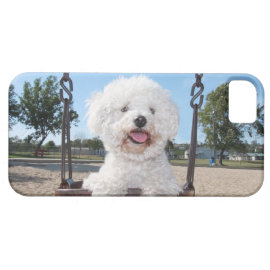 Put In Your Own Photo iPhone 5 Case