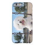 Put In Your Own Photo iPhone 6 case