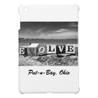 "Put-n-Bay ""Evolve"" Black and White Photo Cover For The iPad Mini"