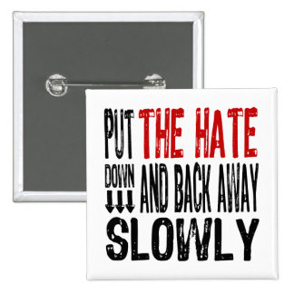 Put the Hate Down Pinback Button