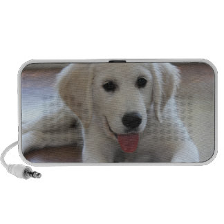 Put your cute puppy photos on a speaker