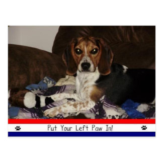 Put Your Left Paw In! Postcard