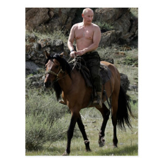 Putin descamisado monta un caballo tarjeta postal
